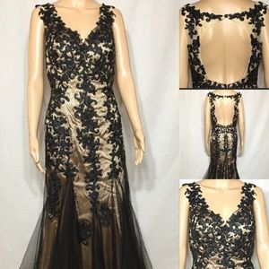 Dresses & Skirts - Lace Evening Gown